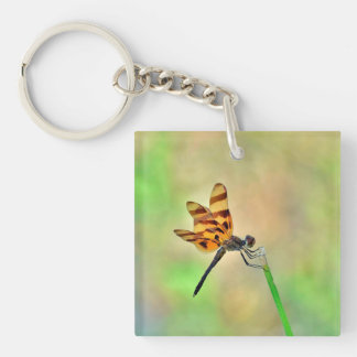 Beautiful Dragonfly Keychain