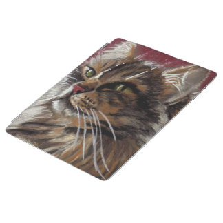 Beautiful Dreamer Maine Coon Cat Case iPad Cover