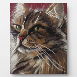 Beautiful Dreamer - Maine Coon Cat Plaque