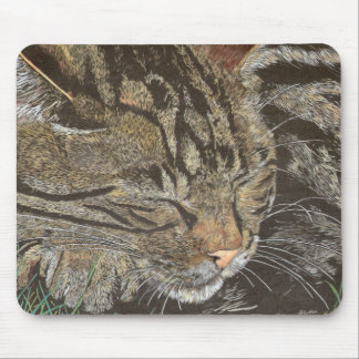 Beautiful Dreamer (sleeping tabby) Mouse Pad