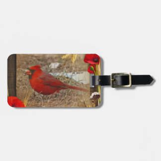 Beautiful & Easy To Spot! Luggage Tag