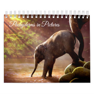 Beautiful Elephant Photographs Wall Calendar