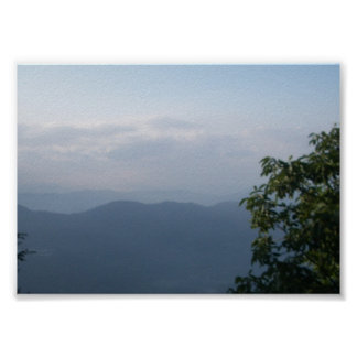 Beautiful evening nature mountains trees poster