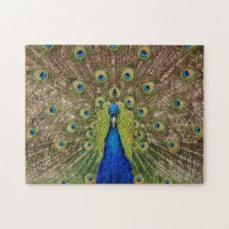 Beautiful exotic peacock print puzzle