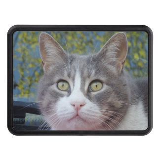 "Beautiful Eyes  Hitch Cover 2"" Receiver"