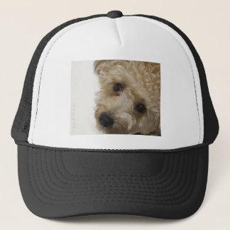 Beautiful Eyes of a Yorkie Poo Puppy Trucker Hat