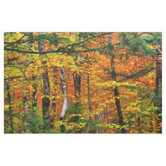 Beautiful Fall Colors in fabric