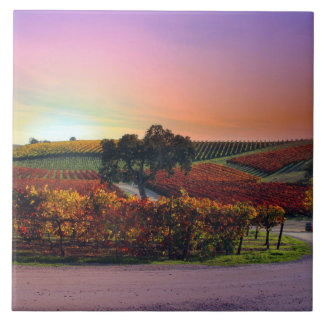 Beautiful Fall Vineyard Art Tile
