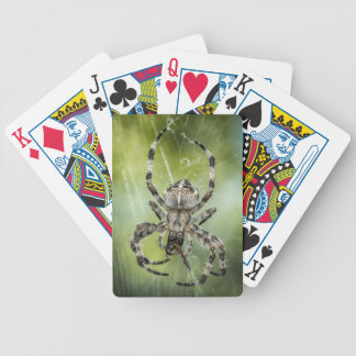 Beautiful Falling Spider on Web Bicycle Playing Cards