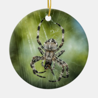 Beautiful Falling Spider on Web Round Ceramic Ornament