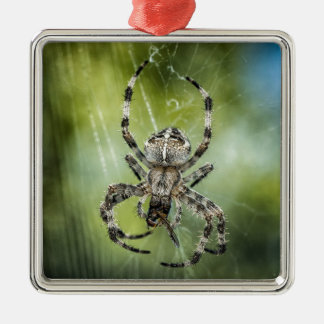 Beautiful Falling Spider on Web Silver-Colored Square Ornament
