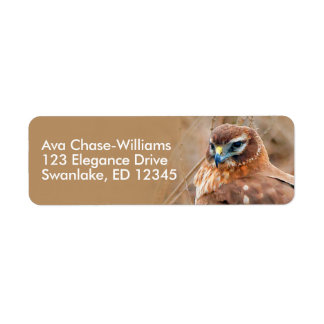 Beautiful Female Northern Harrier in the Marsh Return Address Label
