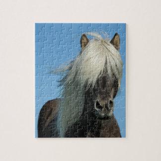 BEAUTIFUL FJORD PONY HORSE STALLION JIGSAW PUZZLE