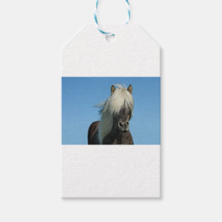 BEAUTIFUL FJORD PONY HORSE STALLION PACK OF GIFT TAGS