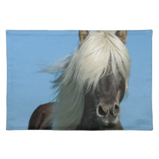 BEAUTIFUL FJORD PONY HORSE STALLION PLACEMAT