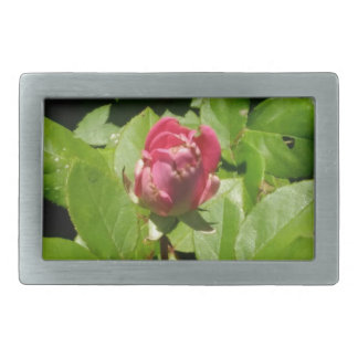 beautiful floral picture belt buckles