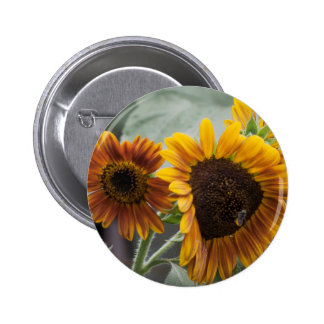Beautiful Florida Sunflowers 2 Inch Round Button