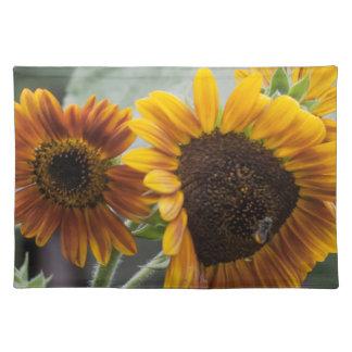 Beautiful Florida Sunflowers Placemat