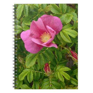 Beautiful Flower in Wonderland Notebook