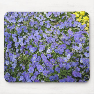 Beautiful Flowers - Mousepad