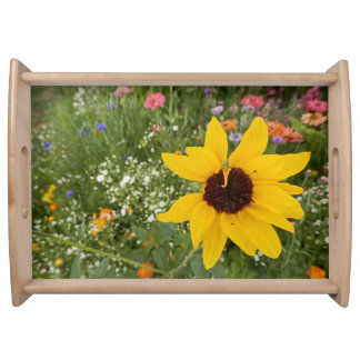 Beautiful flowers of nature serving tray