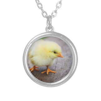 Beautiful fluffy Yellow Chicken Silver Plated Necklace