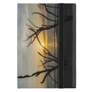 Beautiful Folly Morning iPad Mini Case