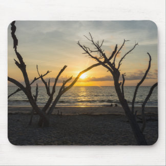 Beautiful Folly Morning Mouse Pad