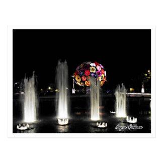 Beautiful  fountain Lyon France Postcard