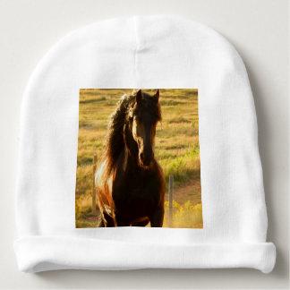 BEAUTIFUL FRIESIAN HORSE STALLION BABY BEANIE