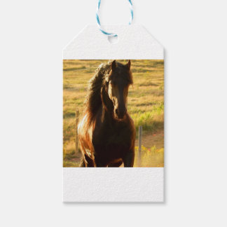 BEAUTIFUL FRIESIAN HORSE STALLION GIFT TAGS