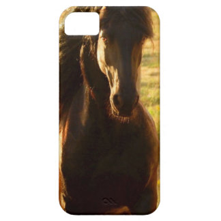 BEAUTIFUL FRIESIAN HORSE STALLION iPhone 5 CASE