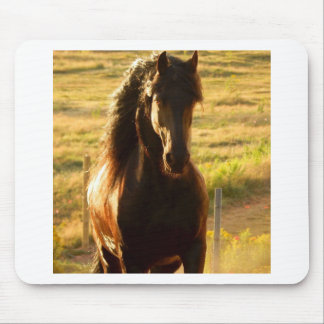 BEAUTIFUL FRIESIAN HORSE STALLION MOUSE PAD