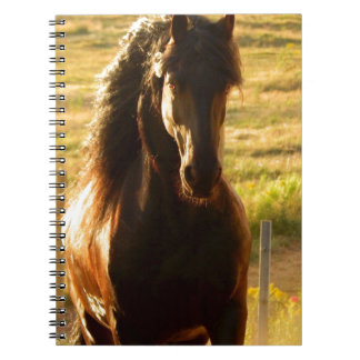 BEAUTIFUL FRIESIAN HORSE STALLION SPIRAL NOTEBOOK