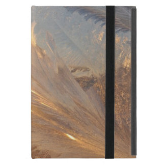 Beautiful Frost iPad Mini Case