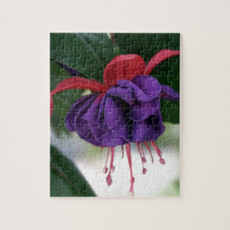 Beautiful Fuchsia Jigsaw Puzzle
