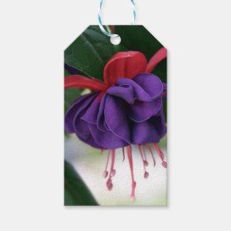 Beautiful Fuchsia Pack Of Gift Tags