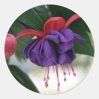 Beautiful Fuchsia Round Sticker