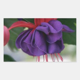 Beautiful Fuchsia Sticker