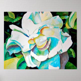 Beautiful Gardenia Close-up Poster