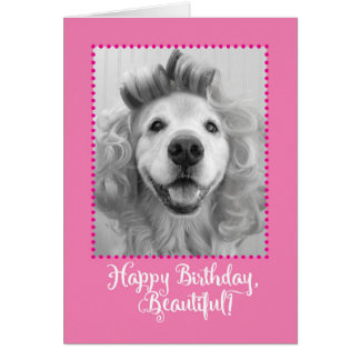 Beautiful Golden Retriever With Curlers Birthday Card