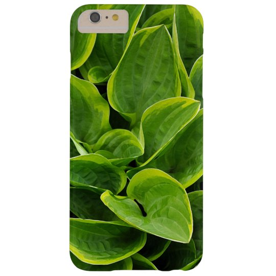 Beautiful green hosta plant galaxy nexus covers
