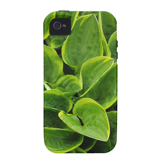 Beautiful green hosta plant iPhone 4/4S cases
