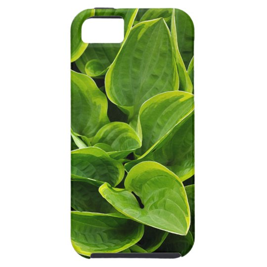 Beautiful green hosta plant iPhone 5 cases