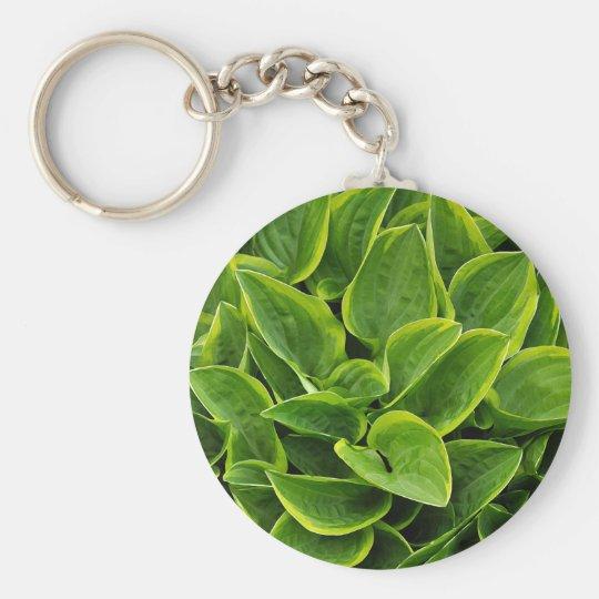 Beautiful green hosta plant keychain