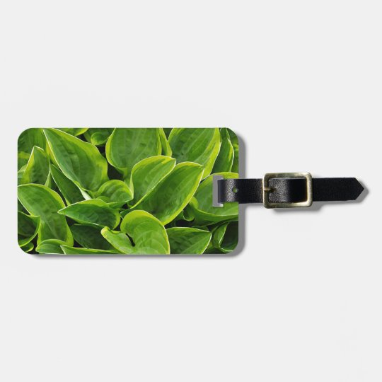 Beautiful green hosta plant luggage tag