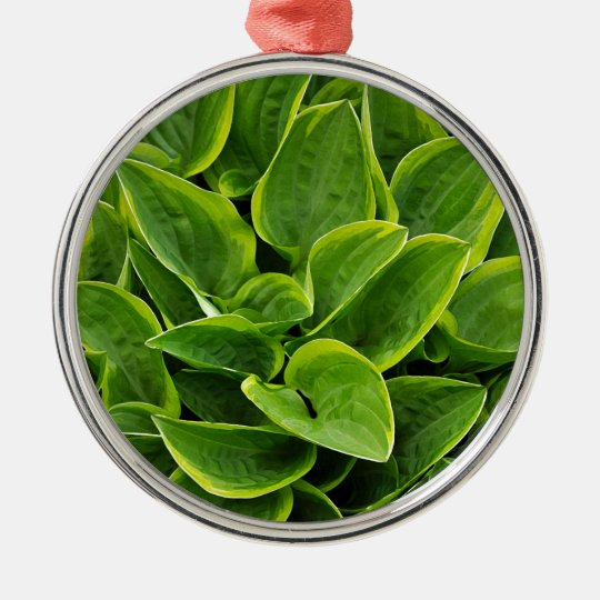 Beautiful green hosta plant metal ornament