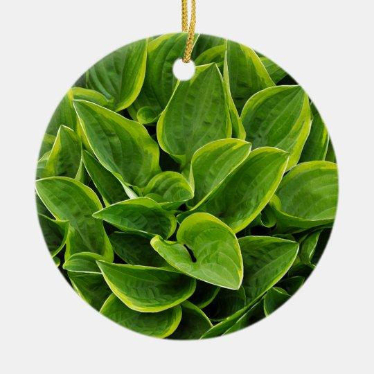 Beautiful green hosta plant round ceramic ornament
