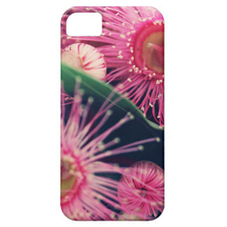 Beautiful Gum Nut Tree Flowers iPhone 5 Covers