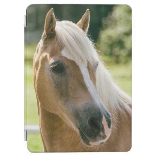 Beautiful haflinger horse portrait iPad air cover